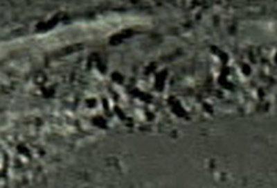 copernicus003.jpg